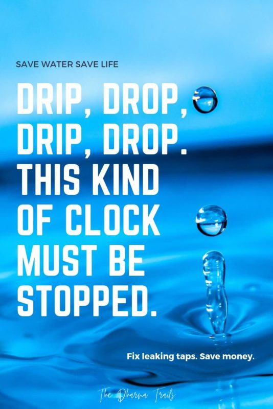 32 Best Quotes And Slogans On Saving Water With Images