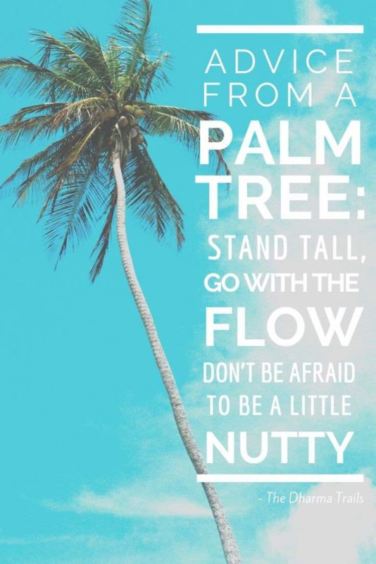 61 Best Beach Quotes and Captions for Swimspiration | The ...